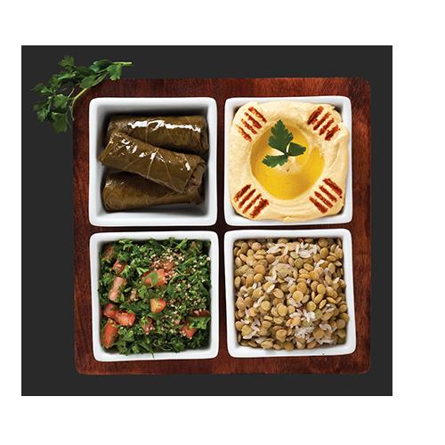 Lebanese Veggie Plate $10.29